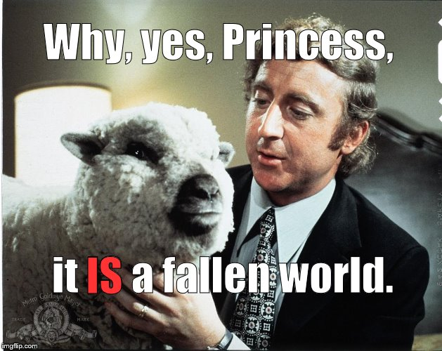 Baaa | Why, yes, Princess, it IS a fallen world. IS | image tagged in baaa | made w/ Imgflip meme maker