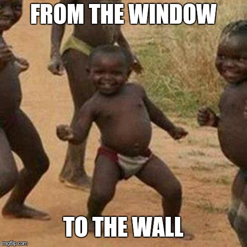 Third World Success Kid Meme | FROM THE WINDOW TO THE WALL | image tagged in memes,third world success kid | made w/ Imgflip meme maker