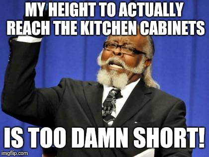 Too damn high.........literally........ | MY HEIGHT TO ACTUALLY REACH THE KITCHEN CABINETS IS TOO DAMN SHORT! | image tagged in memes,too damn high,literally | made w/ Imgflip meme maker