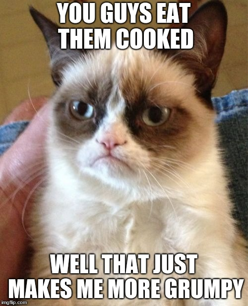 Grumpy Cat Meme | YOU GUYS EAT THEM COOKED WELL THAT JUST MAKES ME MORE GRUMPY | image tagged in memes,grumpy cat | made w/ Imgflip meme maker