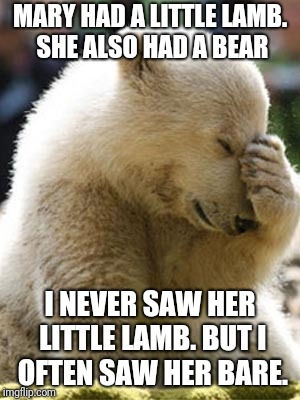Facepalm Bear | MARY HAD A LITTLE LAMB. SHE ALSO HAD A BEAR I NEVER SAW HER LITTLE LAMB. BUT I OFTEN SAW HER BARE. | image tagged in memes,facepalm bear | made w/ Imgflip meme maker