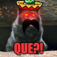 "When it's taco Tuesday but your friend says ""Pay for your own"" 