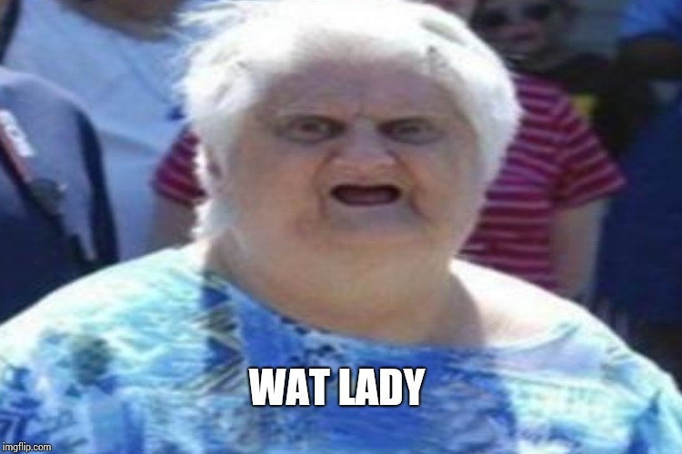 WAT LADY | made w/ Imgflip meme maker