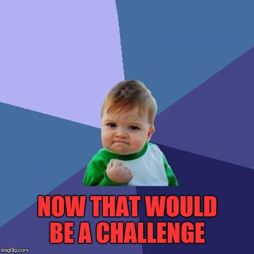 Success Kid Meme | NOW THAT WOULD BE A CHALLENGE | image tagged in memes,success kid | made w/ Imgflip meme maker