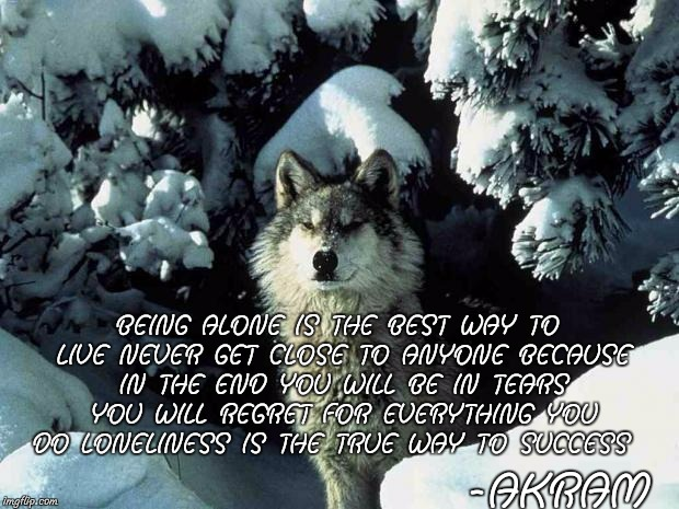 lonewolf | -AKRAM BEING ALONE IS THE BEST WAY TO LIVE NEVER GET CLOSE TO ANYONE BECAUSE IN THE END YOU WILL BE IN TEARS YOU WILL REGRET FOR EVERYTHING  | image tagged in lonewolf | made w/ Imgflip meme maker