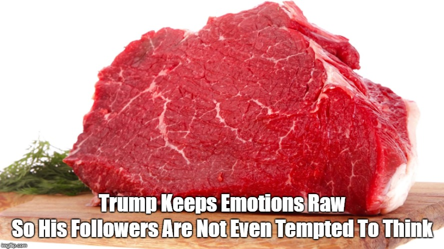 """Trump Keeps Emotions Raw So His Followers Are Not Even Tempted To Think"" 