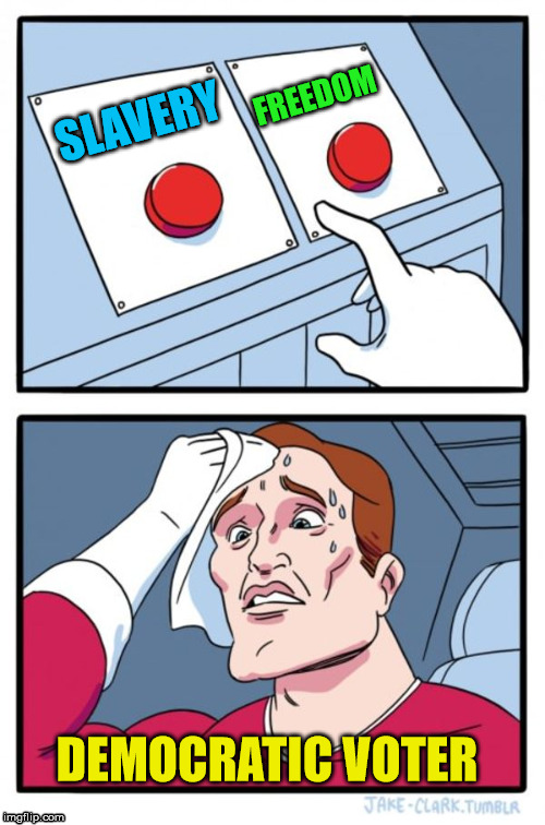 Two Buttons Meme | SLAVERY FREEDOM DEMOCRATIC VOTER | image tagged in memes,two buttons | made w/ Imgflip meme maker