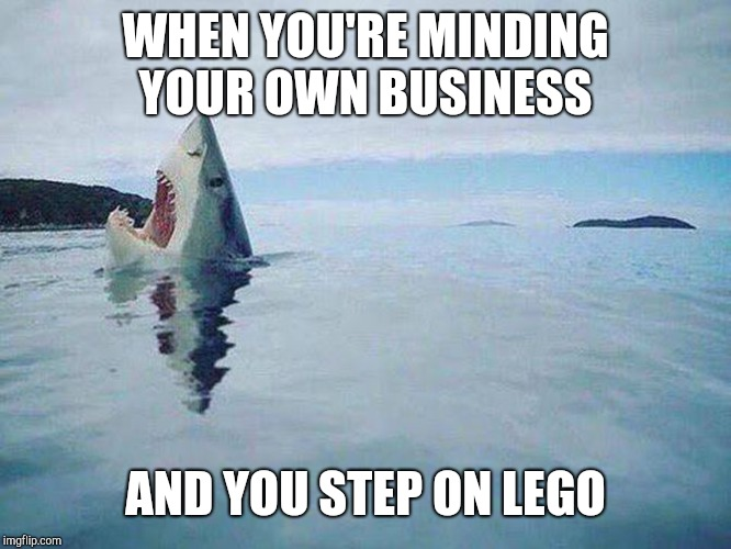 Shark Steps on Lego | WHEN YOU'RE MINDING YOUR OWN BUSINESS AND YOU STEP ON LEGO | image tagged in shark steps on lego | made w/ Imgflip meme maker