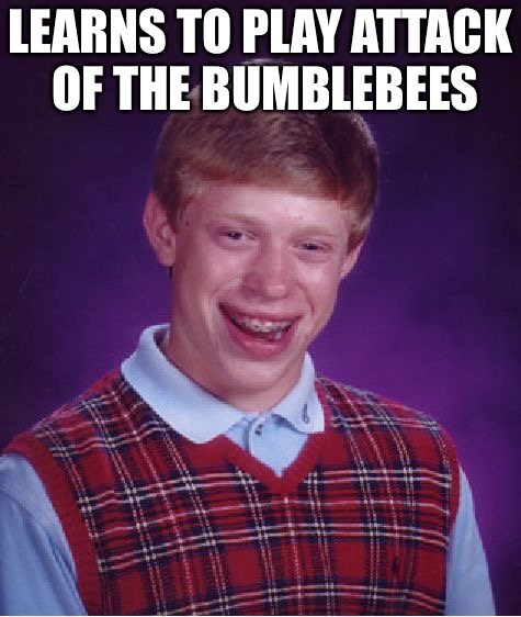 Bad Luck Brian Meme | LEARNS TO PLAY ATTACK OF THE BUMBLEBEES | image tagged in memes,bad luck brian | made w/ Imgflip meme maker