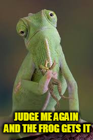 JUDGE ME AGAIN AND THE FROG GETS IT | made w/ Imgflip meme maker