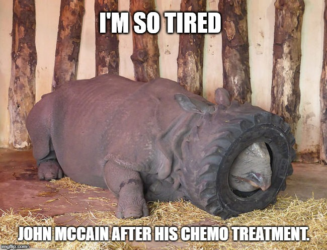 No good RINO. | JOHN MCCAIN AFTER HIS CHEMO TREATMENT. | image tagged in john mccain,cancer,feminism is cancer,cancerous,political meme | made w/ Imgflip meme maker