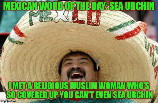 Happy Mexican | MEXICAN WORD OF THE DAY: SEA URCHIN I MET A RELIGIOUS MUSLIM WOMAN WHO'S SO COVERED UP YOU CAN'T EVEN SEA URCHIN | image tagged in happy mexican | made w/ Imgflip meme maker