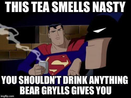 Batman And Superman | THIS TEA SMELLS NASTY YOU SHOULDN'T DRINK ANYTHING BEAR GRYLLS GIVES YOU | image tagged in memes,batman and superman | made w/ Imgflip meme maker