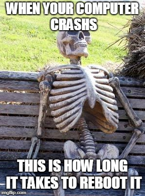 Waiting Skeleton Meme | WHEN YOUR COMPUTER CRASHS THIS IS HOW LONG IT TAKES TO REBOOT IT | image tagged in memes,waiting skeleton | made w/ Imgflip meme maker