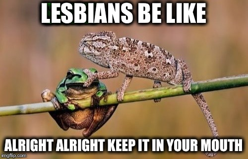 LESBIANS BE LIKE ALRIGHT ALRIGHT KEEP IT IN YOUR MOUTH | image tagged in memes,funny,chameleon | made w/ Imgflip meme maker