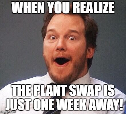 excited | WHEN YOU REALIZE THE PLANT SWAP IS JUST ONE WEEK AWAY! | image tagged in excited | made w/ Imgflip meme maker