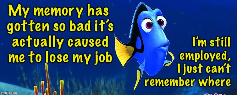 When you really lose your job | My memory has gotten so bad it's actually caused me to lose my job I'm still employed, I just can't remember where | image tagged in dory 5 sec memory,memes,unemployed,job,loss | made w/ Imgflip meme maker