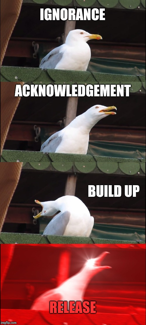 The Four Stages of Grief, as told by Seagull. | IGNORANCE ACKNOWLEDGEMENT BUILD UP RELEASE | image tagged in memes,inhaling seagull,funny | made w/ Imgflip meme maker