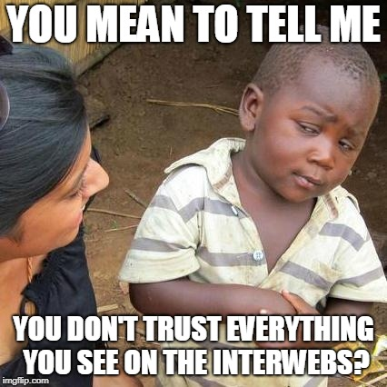 Third World Skeptical Kid Meme | YOU MEAN TO TELL ME YOU DON'T TRUST EVERYTHING YOU SEE ON THE INTERWEBS? | image tagged in memes,third world skeptical kid | made w/ Imgflip meme maker