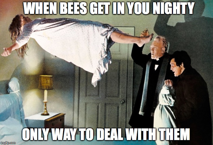 ONLY WAY TO DEAL WITH THEM WHEN BEES GET IN YOU NIGHTY | made w/ Imgflip meme maker