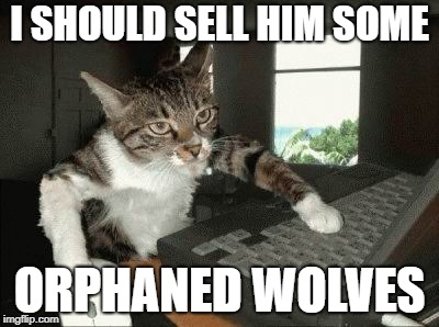 I SHOULD SELL HIM SOME ORPHANED WOLVES | made w/ Imgflip meme maker