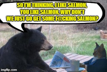 Collaboration   | SO I'M THINKING, I LIKE SALMON, YOU LIKE SALMON, WHY DON'T WE JUST GO GET SOME F@CKING SALMON? | image tagged in funny memes,cat,bear,eat fish | made w/ Imgflip meme maker