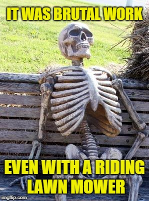 Waiting Skeleton Meme | IT WAS BRUTAL WORK EVEN WITH A RIDING LAWN MOWER | image tagged in memes,waiting skeleton | made w/ Imgflip meme maker