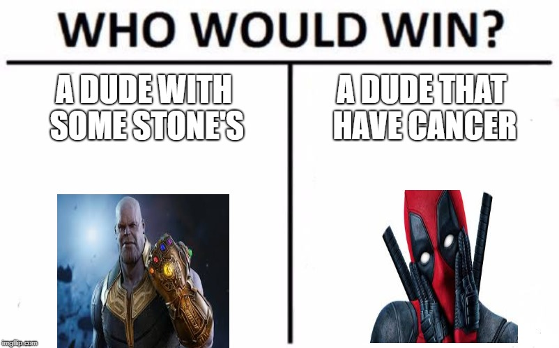 Who Would Win? Meme | A DUDE WITH SOME STONE'S A DUDE THAT HAVE CANCER | image tagged in memes,who would win | made w/ Imgflip meme maker