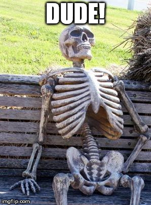 Waiting Skeleton Meme | DUDE! | image tagged in memes,waiting skeleton | made w/ Imgflip meme maker