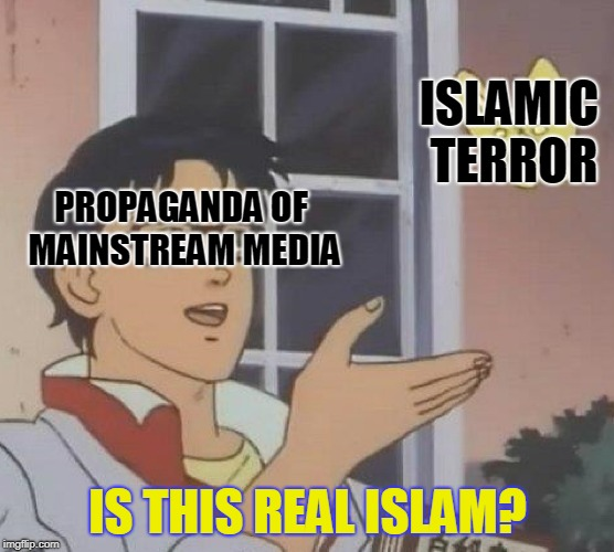 Is This A Pigeon Meme | PROPAGANDA OF MAINSTREAM MEDIA IS THIS REAL ISLAM? ISLAMIC TERROR | image tagged in is this a pigeon | made w/ Imgflip meme maker