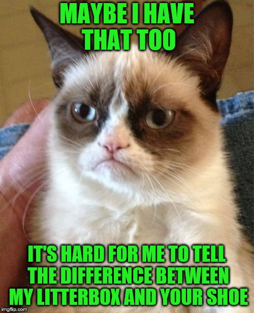 Grumpy Cat Meme | MAYBE I HAVE THAT TOO IT'S HARD FOR ME TO TELL THE DIFFERENCE BETWEEN MY LITTERBOX AND YOUR SHOE | image tagged in memes,grumpy cat | made w/ Imgflip meme maker