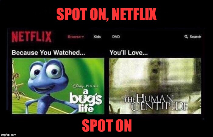 Netflix and Chillers | SPOT ON, NETFLIX SPOT ON | image tagged in netflix,kids,movies,horror movie,wtf,funny memes | made w/ Imgflip meme maker