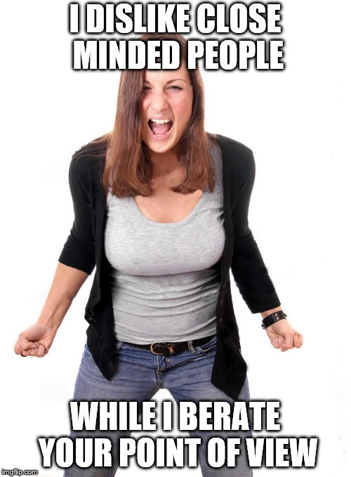 I DISLIKE CLOSE MINDED PEOPLE WHILE I BERATE YOUR POINT OF VIEW | image tagged in angry woman | made w/ Imgflip meme maker