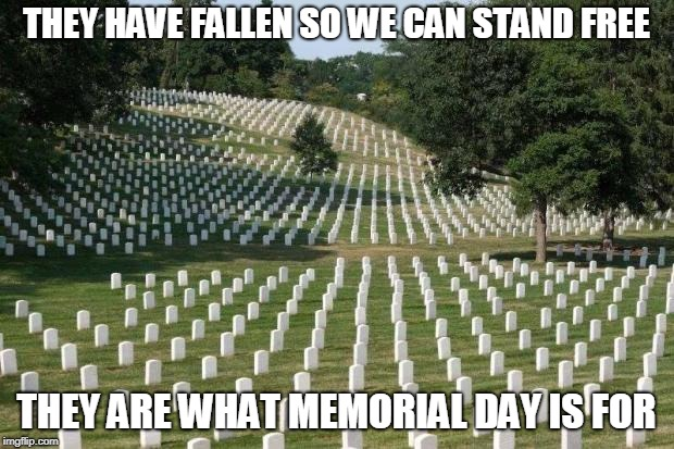 Fallen Soldiers | THEY HAVE FALLEN SO WE CAN STAND FREE THEY ARE WHAT MEMORIAL DAY IS FOR | image tagged in fallen soldiers | made w/ Imgflip meme maker
