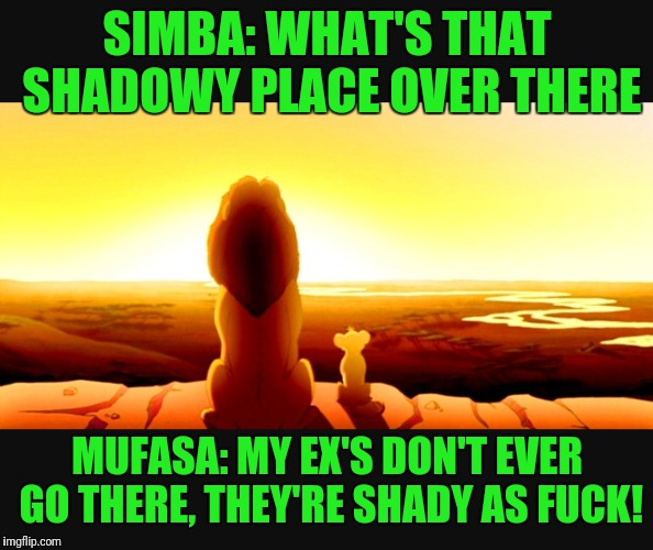 I'm hilarious | SIMBA: WHAT'S THAT SHADOWY PLACE OVER THERE MUFASA: MY EX'S DON'T EVER GO THERE, THEY'RE SHADY AS F**K! | image tagged in lol,funny memes,hilarious memes | made w/ Imgflip meme maker