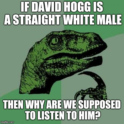 Philosoraptor Meme | IF DAVID HOGG IS A STRAIGHT WHITE MALE THEN WHY ARE WE SUPPOSED TO LISTEN TO HIM? | image tagged in memes,philosoraptor | made w/ Imgflip meme maker