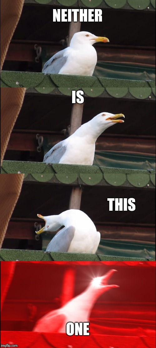 Inhaling Seagull Meme | NEITHER IS THIS ONE | image tagged in memes,inhaling seagull | made w/ Imgflip meme maker