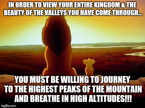 Lion King | IN ORDER TO VIEW YOUR ENTIRE KINGDOM & THE BEAUTY OF THE VALLEYS YOU HAVE COME THROUGH... YOU MUST BE WILLING TO JOURNEY TO THE HIGHEST PEAK | image tagged in memes,lion king | made w/ Imgflip meme maker