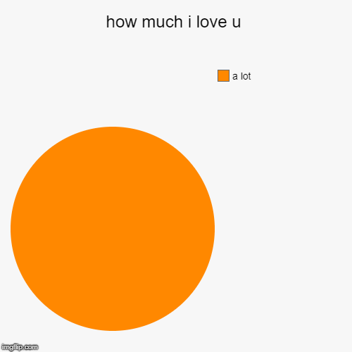 how much i love u | a lot | image tagged in funny,pie charts | made w/ Imgflip pie chart maker