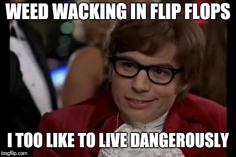 I Too Like To Live Dangerously Meme | WEED WACKING IN FLIP FLOPS I TOO LIKE TO LIVE DANGEROUSLY | image tagged in memes,i too like to live dangerously,weed,flip flops | made w/ Imgflip meme maker