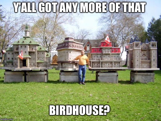 Y'ALL GOT ANY MORE OF THAT BIRDHOUSE? | made w/ Imgflip meme maker