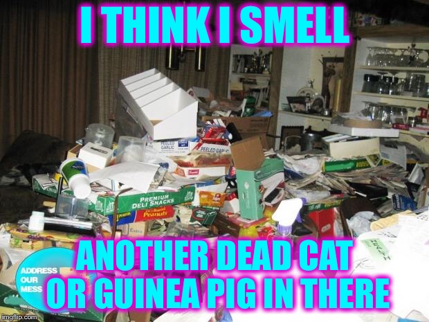 Hoarder | I THINK I SMELL ANOTHER DEAD CAT OR GUINEA PIG IN THERE | image tagged in hoarder | made w/ Imgflip meme maker