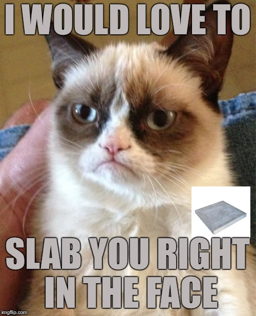 Grumpy Cat Meme | I WOULD LOVE TO SLAB YOU RIGHT IN THE FACE | image tagged in memes,grumpy cat,concrete slab week | made w/ Imgflip meme maker