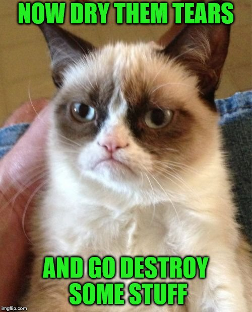 Grumpy Cat Meme | NOW DRY THEM TEARS AND GO DESTROY SOME STUFF | image tagged in memes,grumpy cat | made w/ Imgflip meme maker