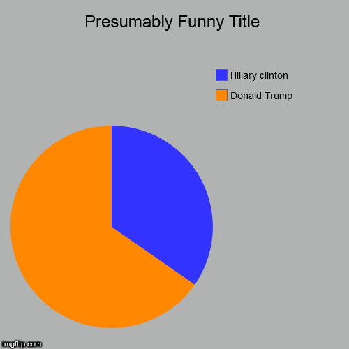 The Election for USA 2017 | Donald Trump, Hillary clinton | image tagged in funny,pie charts | made w/ Imgflip chart maker