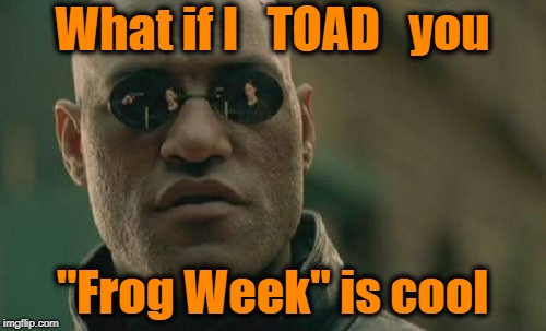 "Matrix Morpheus Meme | What if I   TOAD   you ""Frog Week"" is cool 