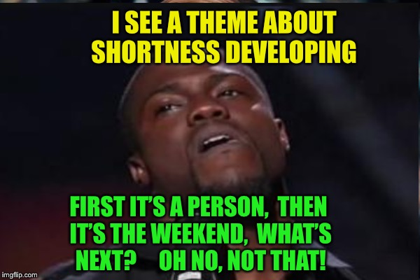 I SEE A THEME ABOUT SHORTNESS DEVELOPING FIRST IT'S A PERSON,  THEN IT'S THE WEEKEND,  WHAT'S NEXT?     OH NO, NOT THAT! | made w/ Imgflip meme maker