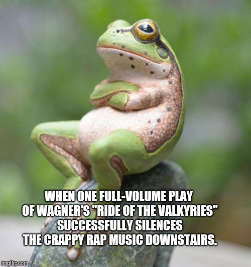 "WHEN ONE FULL-VOLUME PLAY OF WAGNER'S ""RIDE OF THE VALKYRIES"" SUCCESSFULLY SILENCES THE CRAPPY RAP MUSIC DOWNSTAIRS. 