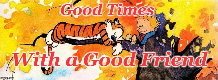 Good Times | Good Times With a Good Friend | image tagged in calvin and hobbes,hanging out,trees,just chillin' | made w/ Imgflip meme maker