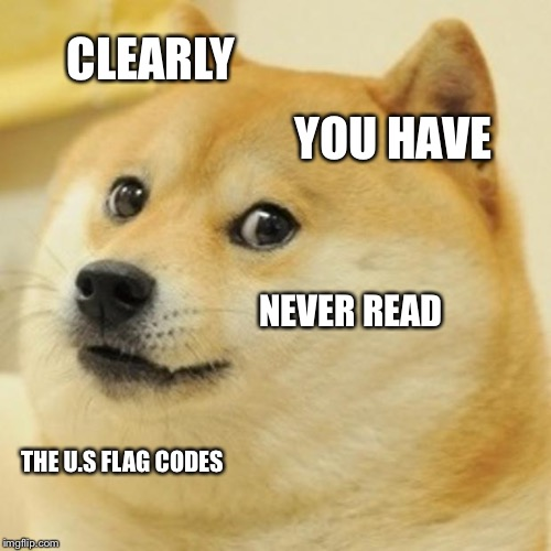 Doge Meme | CLEARLY YOU HAVE NEVER READ THE U.S FLAG CODES | image tagged in memes,doge | made w/ Imgflip meme maker
